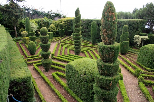 A Gardener's Guide to One-Upping Your Neighbours