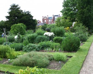 Could You Make Your Garden More Eco-Friendly?