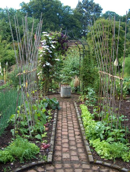 Gorgeous gardens and gorgeous vegetables