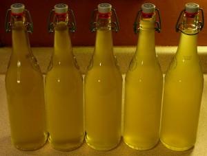 Elderflower cordial in bottles.