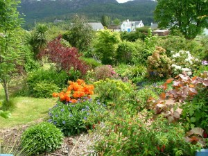 One of many beautiful gardens in Plockton, Ross and Cromarty. Garden compost