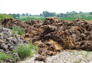 Muck at edge of a field near Much Wenlock, Shropshire. Garden compost