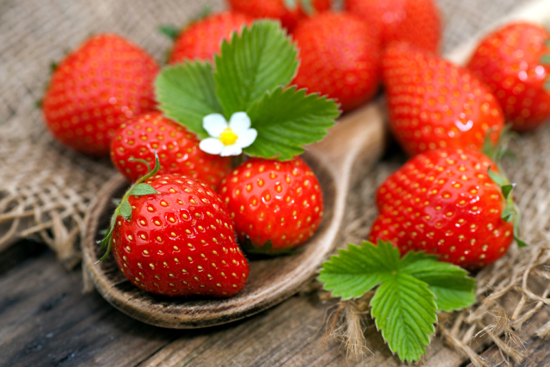 Game set and match for the strawberry season