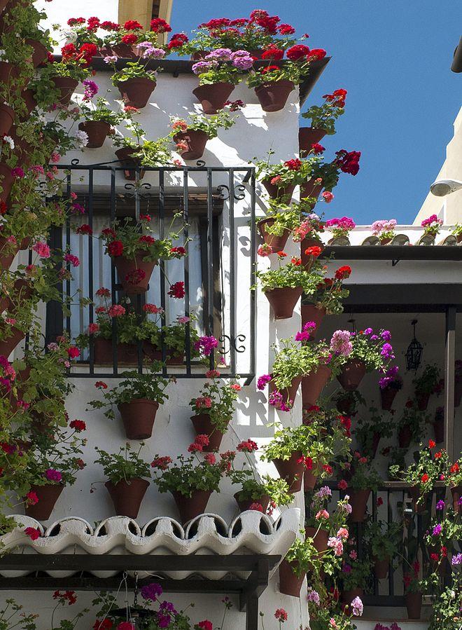 A patio in Córdoba, Spain - a World Heritage Site. Peace