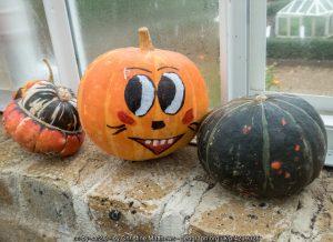 Create a Halloween garden and treat your neighbours!
