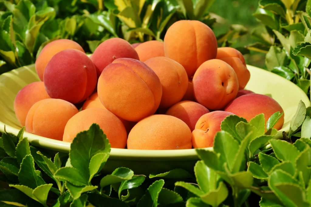 Apricots by Romi. Chill out zone