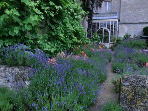 Plan and plant a sensory bed or border in your garden
