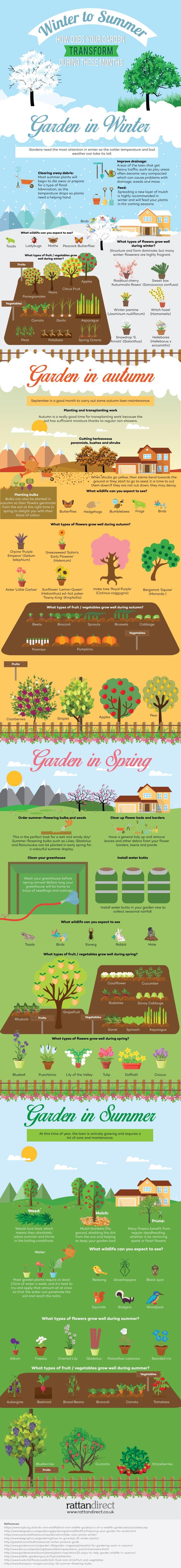 How Your Garden Transforms Through the Seasons (Infographic)