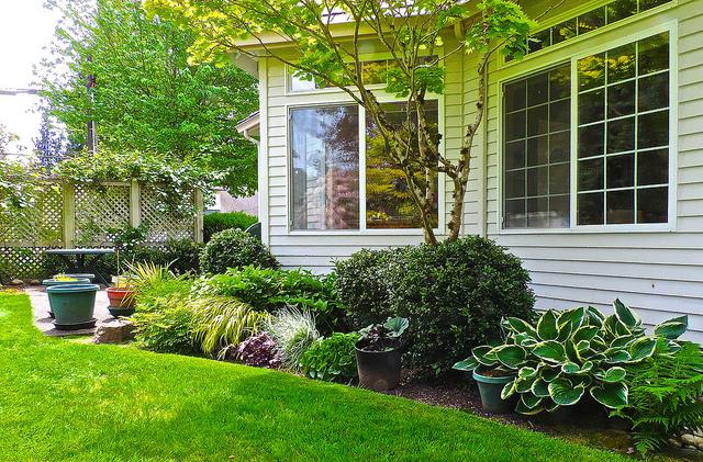 Back garden near Seattle. Extension