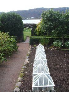 Garden cold frames – what can they do for your garden?