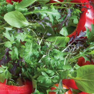 Salad leaves – plant and sow now to enjoy all summer
