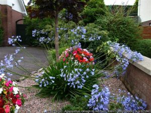 Glamorous gardens - plan for next year and create one now