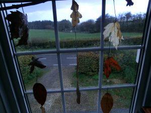 Autumn leaves: make them last