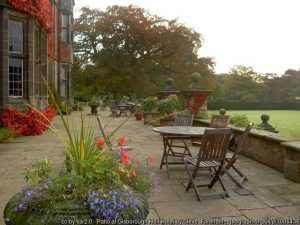 Tidy up your garden and patio – prepare for winter!