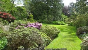 Lawn edges make a garden look loved. Here's how.