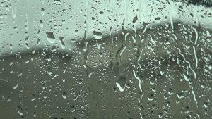 Why We Need Rain