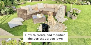 How To Create And Maintain The Perfect Garden Lawn