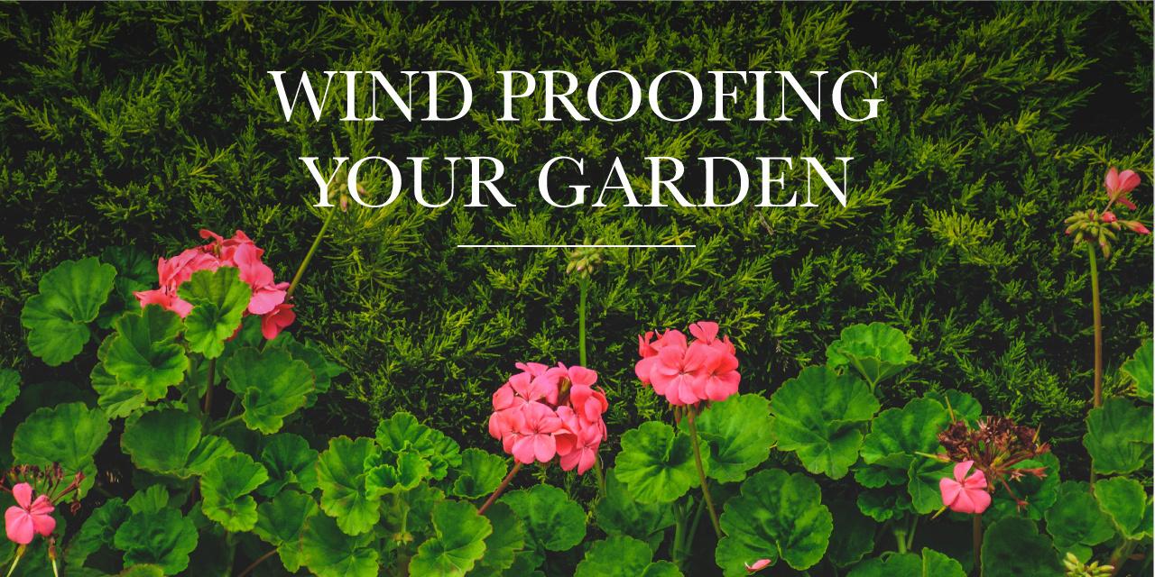 Wind Proofing Your Garden